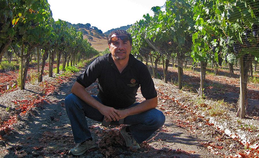 Antonio Silvia i vinmarkene. foto ©️ Silvia Cellars
